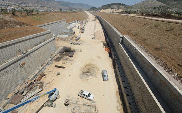 Danya cebus - Gilon Tunnel - Image 1