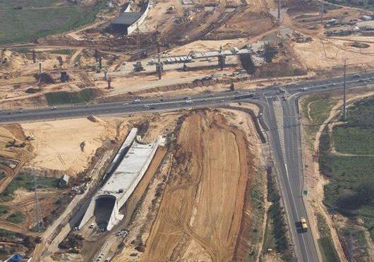 Danya cebus - Highway 431 - Image 10