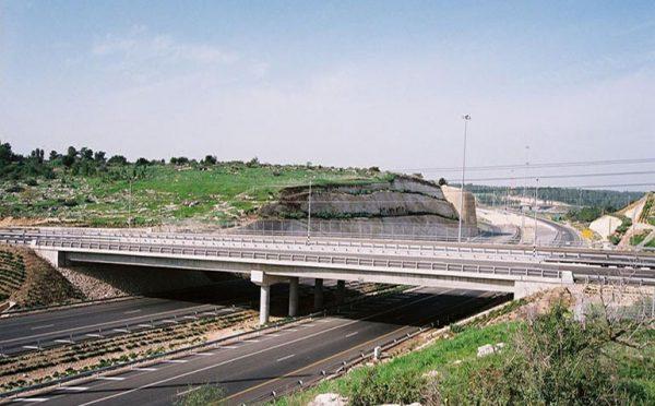 Danya cebus - Trans Israel Highway (Highway 6) - Image 2