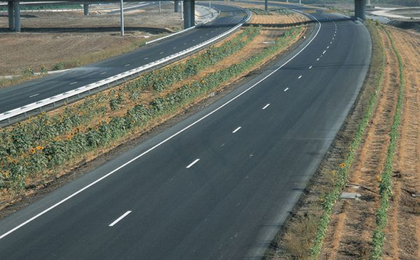 Danya cebus - Trans Israel Highway (Highway 6) - Image 4