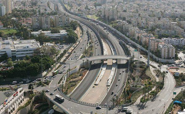 Danya cebus - Dov Hoz Interchange - Image 4